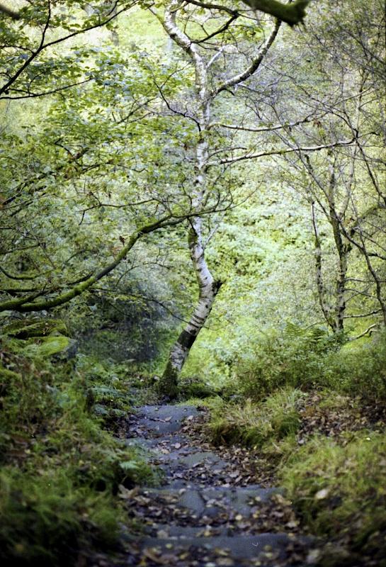 9hr Walk, Holme Valley, Yorkshire