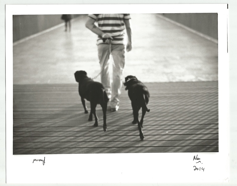 Alan Falzon,Hand Made,Silver Gelatin,Limited Edition,Best mates, Valletta, 2014