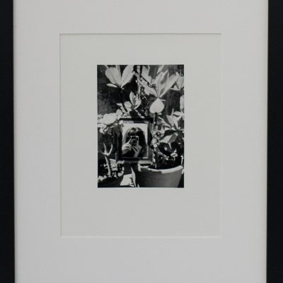 Alan Falzon, Fotographija, Hand Printed Exhibition, Silver Gelatin, Darkroom, Fine Art, Traditional, Hand Made, Unique Prints, Photography, Splendid, Valletta
