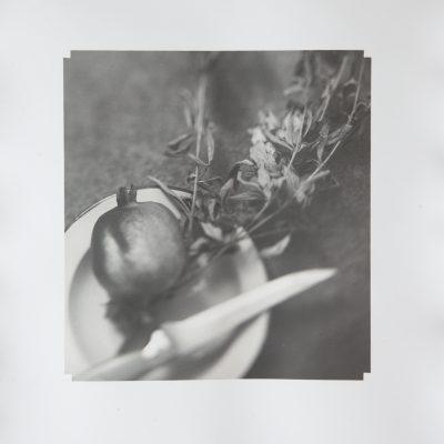 Fine Art, Hand Printed, Silver Gelatin, Alan Falzon, Fibre Paper, Fruit, Delicious, Pomegranate
